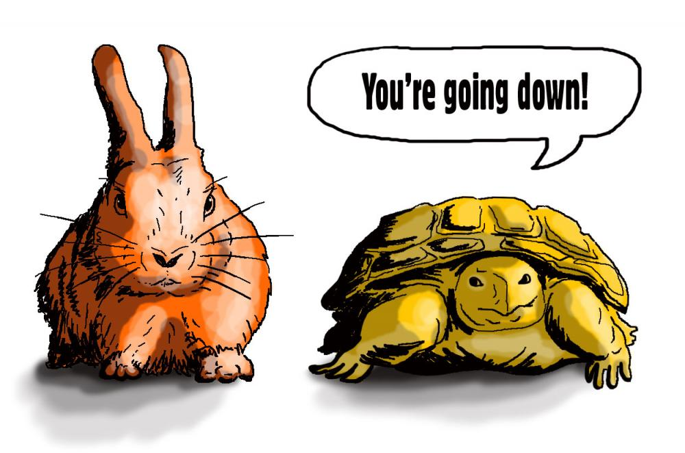 "Cartoon of a tortoise & hare. Tortoise says ""youre going down""."